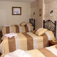 Hotel Nezih Istanbul 3* Стандартный номер с различными типами кроватей фото 10
