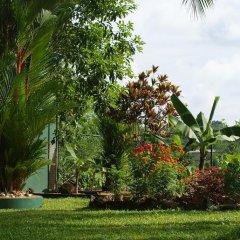 Отель Lanka Rose Guest House Шри-Ланка, Берувела - отзывы, цены и фото номеров - забронировать отель Lanka Rose Guest House онлайн фото 15