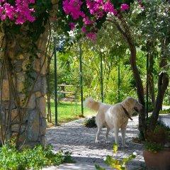 Отель Olive Farm Of Datca Guesthouse - Adults Only Датча с домашними животными