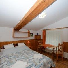 Отель Fehér Sas Panzió Венгрия, Силвашварад - отзывы, цены и фото номеров - забронировать отель Fehér Sas Panzió онлайн комната для гостей фото 3