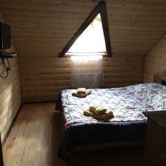 Гостиница Guest House Zator удобства в номере