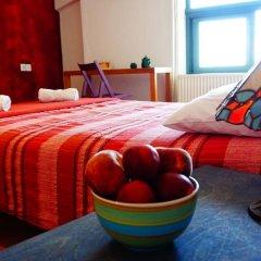 Отель The White Rabbit комната для гостей фото 4