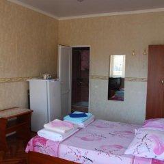 Гостевой дом Простор Стандартный номер с двуспальной кроватью фото 14