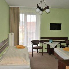 Отель Halny Pensjonat 2* Стандартный номер фото 6