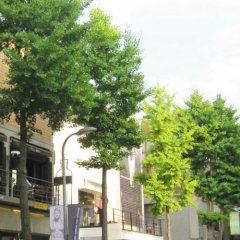 Отель 24 Guesthouse Garosu-gil (Gangnam) фото 6