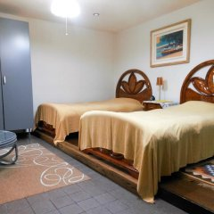 Отель Izukogen Onsen J Garden 3* Стандартный номер фото 6