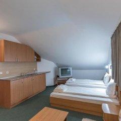 Hotel Iceberg Bansko в номере фото 2