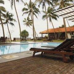 Отель Blue Beach Шри-Ланка, Ваддува - отзывы, цены и фото номеров - забронировать отель Blue Beach онлайн бассейн