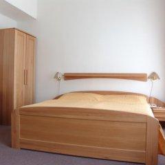 Отель Elwa Spa S.r.o. 3* Стандартный номер с различными типами кроватей