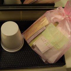 Asakusa Central Hotel 3* Стандартный номер с двуспальной кроватью фото 13