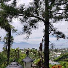 Отель Chalet de tahiti Французская Полинезия, Пунаауиа - отзывы, цены и фото номеров - забронировать отель Chalet de tahiti онлайн балкон
