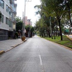 Отель Suites del Carmen - Churubusco Мексика, Мехико - отзывы, цены и фото номеров - забронировать отель Suites del Carmen - Churubusco онлайн фото 3