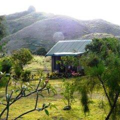 Waitui Basecamp - Hostel фото 13