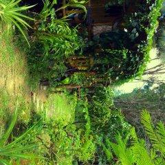Отель Easylife Bungalow Ланта фото 12