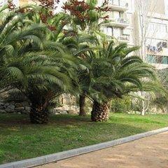 Отель Livingstone Барселона фото 2