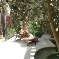 Dar Souad in Tunis, Tunisia from 122$, photos, reviews - zenhotels.com photo 4