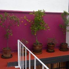 Апартаменты Sunflower Apartment near Coyoacan District Студия фото 3