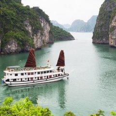 Отель Swan Cruises Halong 3* Стандартный номер с различными типами кроватей