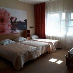 Гостевой дом Родник Стандартный номер с различными типами кроватей фото 3