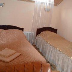 Отель Ашхен Осташков комната для гостей фото 3