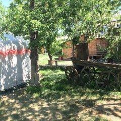 Отель Turkestan Yurt Camp Кыргызстан, Каракол - отзывы, цены и фото номеров - забронировать отель Turkestan Yurt Camp онлайн фото 2