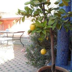 Отель Riad Lapis-lazuli Марракеш фото 3