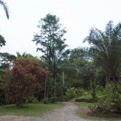 Отель Rio Santiago Nature Resort фото 2