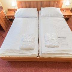 Spa Hotel Vltava 3* Номер Комфорт с двуспальной кроватью