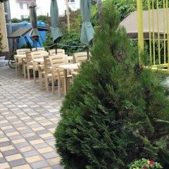 Гостиница Guest House Vinogradnaya 4 в Анапе отзывы, цены и фото номеров - забронировать гостиницу Guest House Vinogradnaya 4 онлайн Анапа помещение для мероприятий