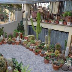 Отель Affittacamere Acquamarina Ористано помещение для мероприятий