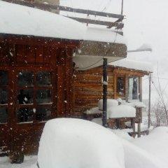 Отель Zornica Guest House Болгария, Чепеларе - отзывы, цены и фото номеров - забронировать отель Zornica Guest House онлайн фото 6