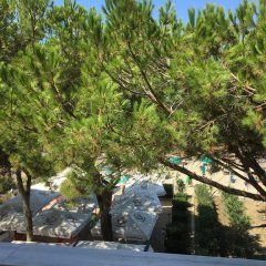 Отель Enera Албания, Голем - отзывы, цены и фото номеров - забронировать отель Enera онлайн фото 2