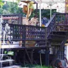 Отель Dom Wypoczynkowy Halit Косцелиско гостиничный бар