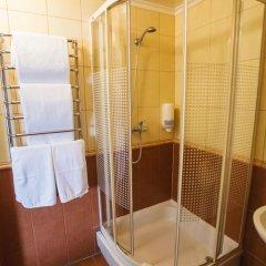 Айвенго Отель 3* Стандартный номер с различными типами кроватей фото 10