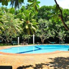 Отель Ypsylon Tourist Resort Шри-Ланка, Берувела - отзывы, цены и фото номеров - забронировать отель Ypsylon Tourist Resort онлайн бассейн фото 2
