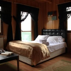 Villa de Pelit Hotel 3* Стандартный номер с различными типами кроватей фото 26