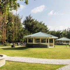 Отель Newtown Inn Мальдивы, Северный атолл Мале - отзывы, цены и фото номеров - забронировать отель Newtown Inn онлайн