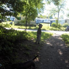 Отель Skovlund Camping & Cottages Боркоп приотельная территория фото 2
