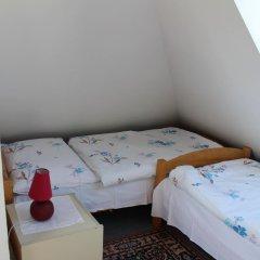 Отель Pension Hanspaulka 2* Стандартный номер с различными типами кроватей фото 6