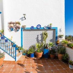 Отель Hostal Guadalupe