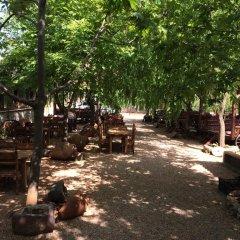 Kas Dogapark Турция, Патара - отзывы, цены и фото номеров - забронировать отель Kas Dogapark онлайн фото 7