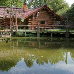 Гостиница Medvezhya Berloga фото 3
