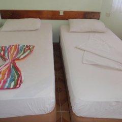 Aloe Apart Hotel 3* Стандартный номер с двуспальной кроватью фото 2