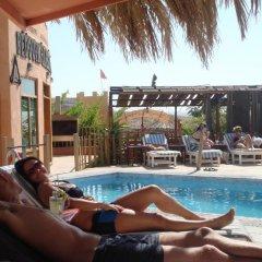 Отель Bedouin Garden Village бассейн фото 3