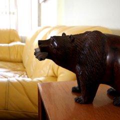 Отель Hostal Pension Mina Мексика, Гвадалахара - отзывы, цены и фото номеров - забронировать отель Hostal Pension Mina онлайн с домашними животными