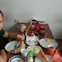Taz Hostel питание
