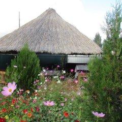 Отель Happy Nomads Yurt Camp Кыргызстан, Каракол - отзывы, цены и фото номеров - забронировать отель Happy Nomads Yurt Camp онлайн