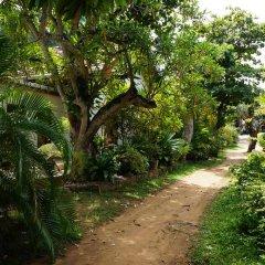 Отель The Tandem Guesthouse Шри-Ланка, Хиккадува - отзывы, цены и фото номеров - забронировать отель The Tandem Guesthouse онлайн фото 3