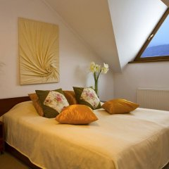 Гостиница Troyanda Karpat 3* Стандартный номер разные типы кроватей фото 5