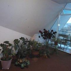 Гостиница Лотос в Анапе отзывы, цены и фото номеров - забронировать гостиницу Лотос онлайн Анапа пляж